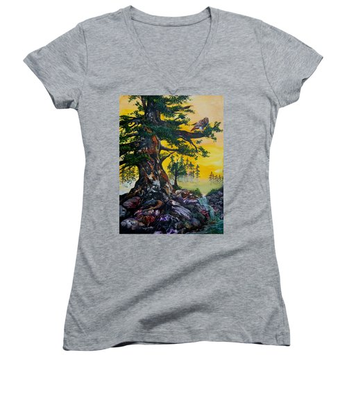 Red Tailed Hawk Women's V-Neck