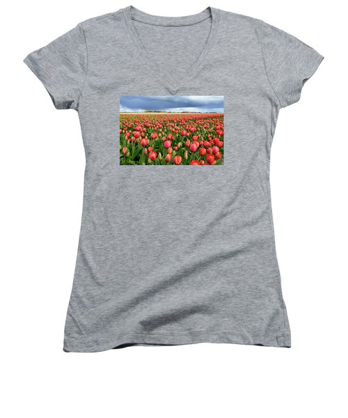 Red Tulip Field Women's V-Neck T-Shirt