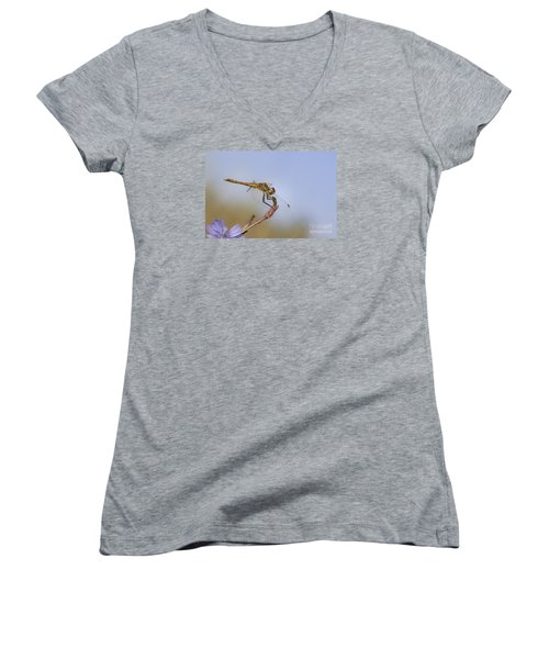 Women's V-Neck T-Shirt (Junior Cut) featuring the photograph Red Veined Darter Dragonfly by Jivko Nakev