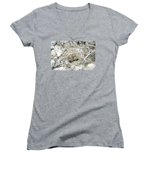 Red-wattled Lapwing Nest Women's V-Neck (Athletic Fit)