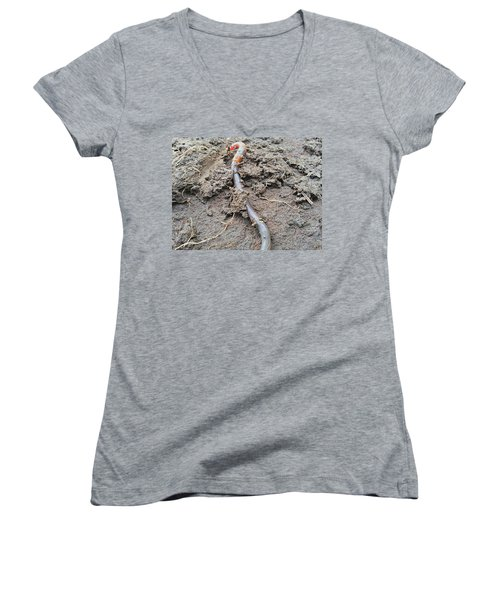 Women's V-Neck featuring the photograph Red Wiggler by Robert Knight