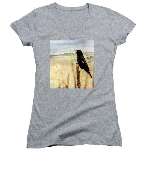 Red-winged Blackbird Women's V-Neck