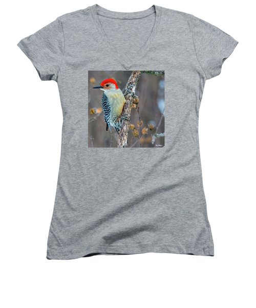Redbellied Woodpecker Women's V-Neck T-Shirt (Junior Cut) by Skip Tribby
