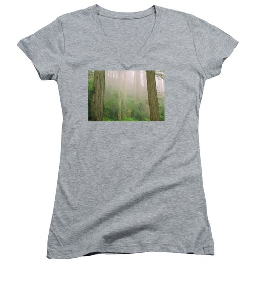 Redwoods Fog Women's V-Neck