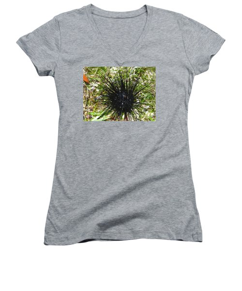 Reef Life - Sea Urchin 1 Women's V-Neck T-Shirt (Junior Cut) by Exploramum Exploramum