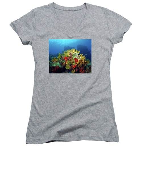 Reef Scene With Divers Bubbles Women's V-Neck