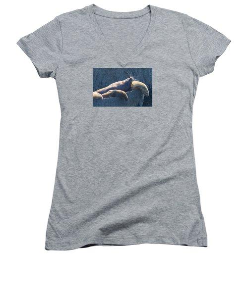 Reflected Glory Women's V-Neck T-Shirt (Junior Cut) by Harold Piskiel
