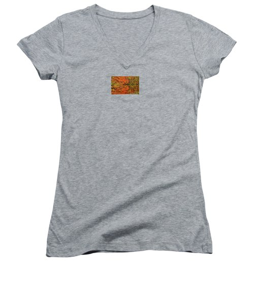 Reflection Of Autumn Women's V-Neck T-Shirt