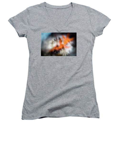 Reflection Of Trees Over An Oak Leaf Encased In Water And Ice Women's V-Neck