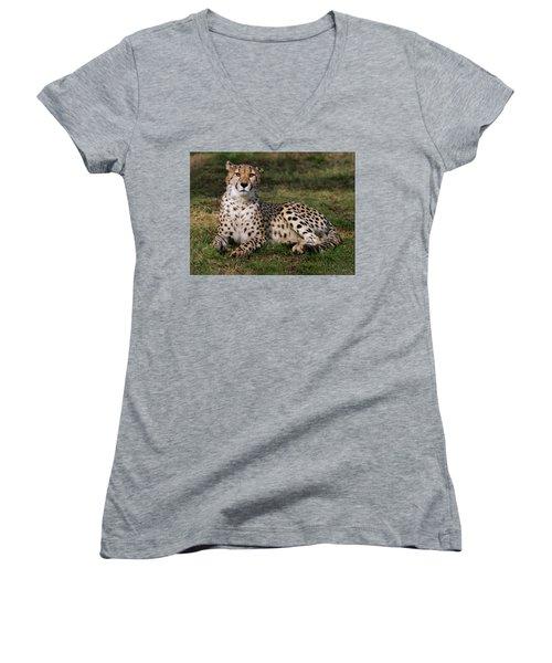 Regal Pose Women's V-Neck T-Shirt