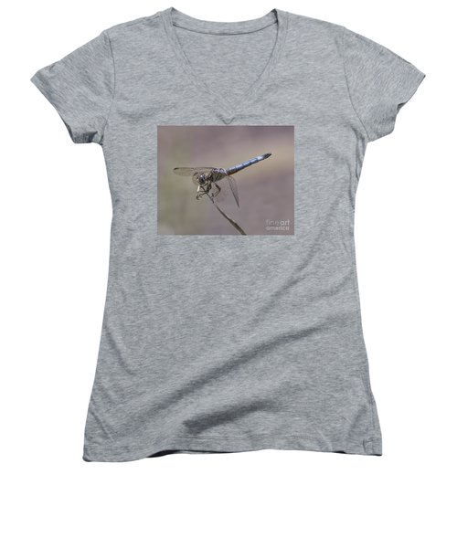 Resting My Wings Women's V-Neck (Athletic Fit)