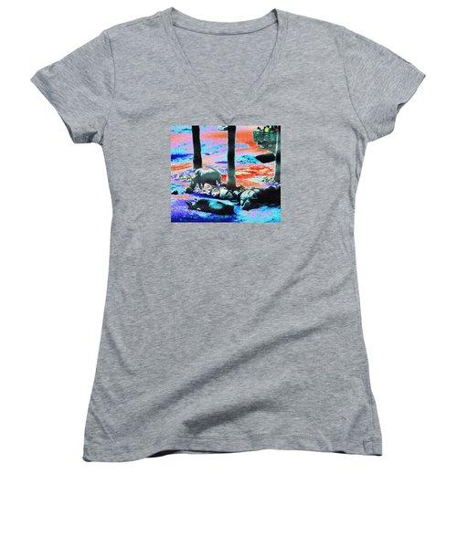 Rhinos Having A Picnic Women's V-Neck T-Shirt (Junior Cut) by Abstract Angel Artist Stephen K