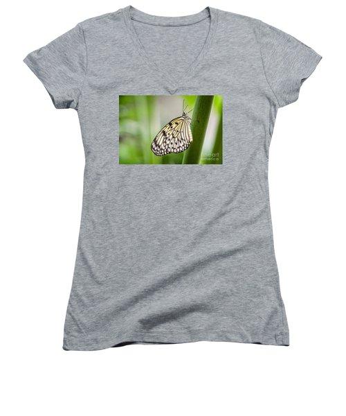 Rice Paper Women's V-Neck T-Shirt