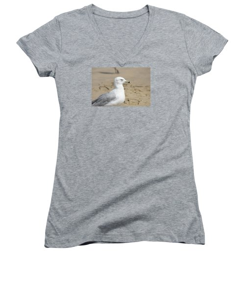 Women's V-Neck T-Shirt (Junior Cut) featuring the photograph Ring-billed Gull by Heidi Poulin