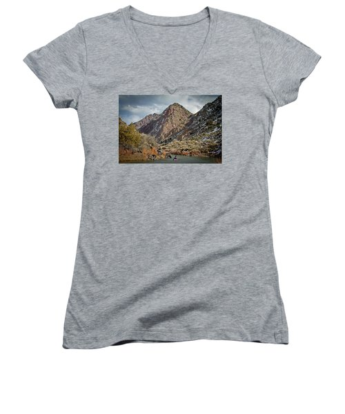 Rio Grande Racecourse In Winter Women's V-Neck T-Shirt