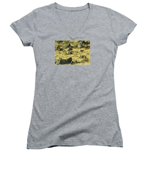 Roaming Free Women's V-Neck T-Shirt (Junior Cut) by Dale Stillman