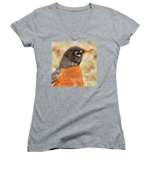 Women's V-Neck T-Shirt featuring the photograph Robin by Debbie Stahre