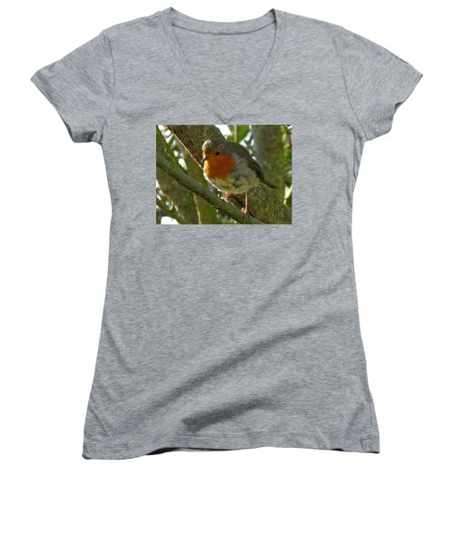 Robin In A Tree Women's V-Neck T-Shirt