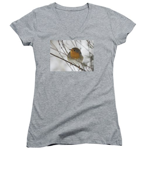 Robin In The Snow Women's V-Neck (Athletic Fit)