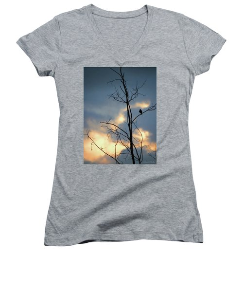 Women's V-Neck T-Shirt (Junior Cut) featuring the photograph Robin Watching Sunset After The Storm by Sandi OReilly