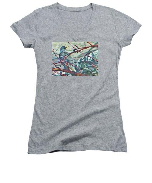 Robins Impression Of Spring Women's V-Neck T-Shirt