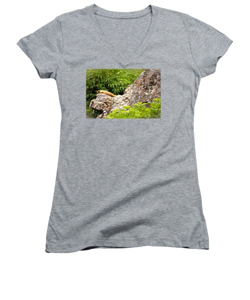 Women's V-Neck T-Shirt (Junior Cut) featuring the photograph Rock Chuck by Lana Trussell
