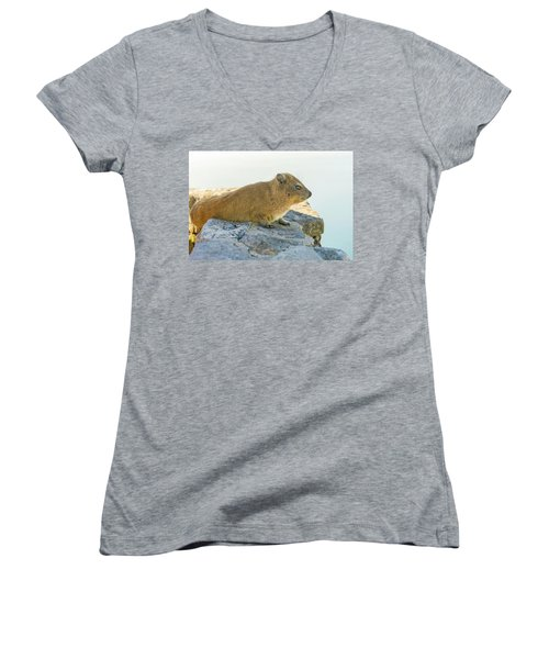 Rock Hyrax On Table Mountain Cape Town South Africa Women's V-Neck T-Shirt