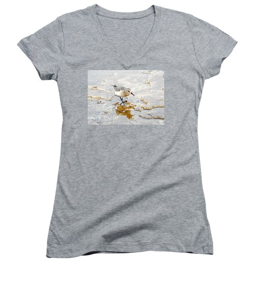 Rock Wren In Mammoth Springs Yellowstone Women's V-Neck (Athletic Fit)