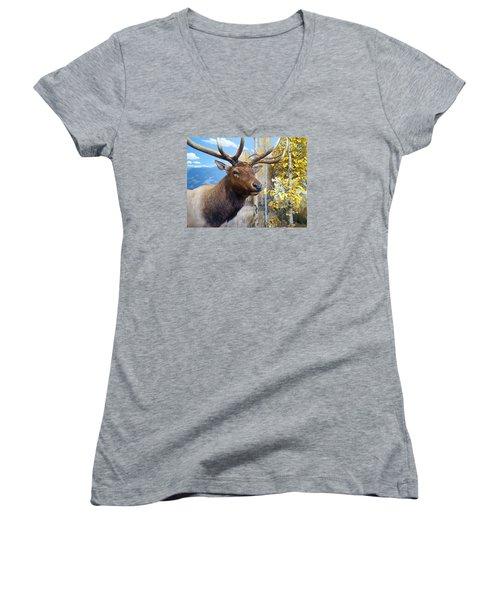 Rocky Mountain Elk Women's V-Neck T-Shirt (Junior Cut) by Karon Melillo DeVega