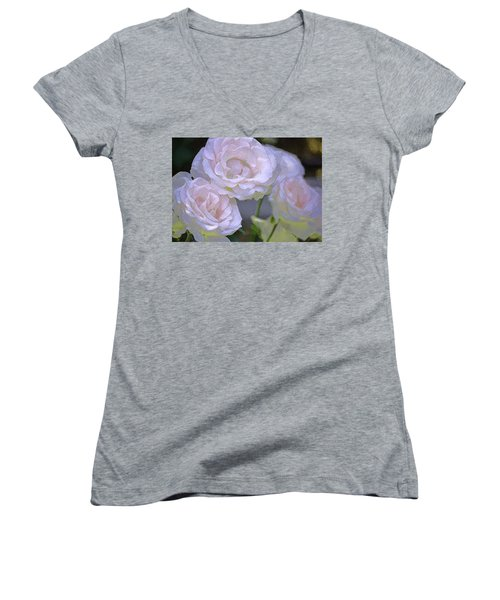 Rose 120 Women's V-Neck T-Shirt (Junior Cut) by Pamela Cooper