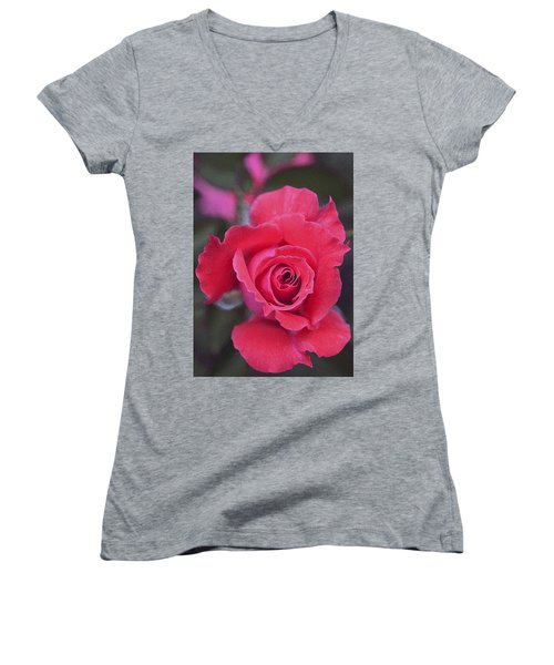 Rose 160 Women's V-Neck T-Shirt (Junior Cut) by Pamela Cooper