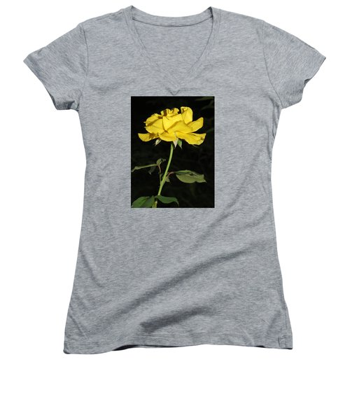 Women's V-Neck T-Shirt (Junior Cut) featuring the photograph Rose 5 by Phyllis Beiser