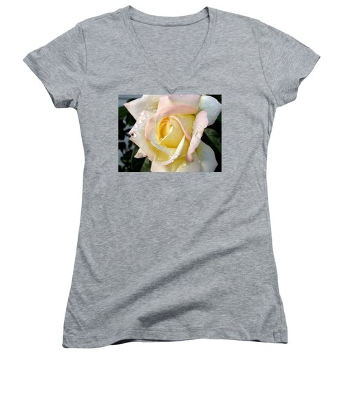 Rose And Raindrops Women's V-Neck T-Shirt