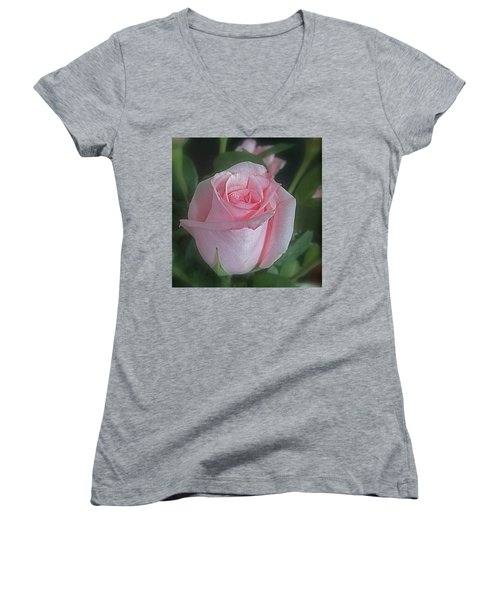 Rose Dreams Women's V-Neck T-Shirt