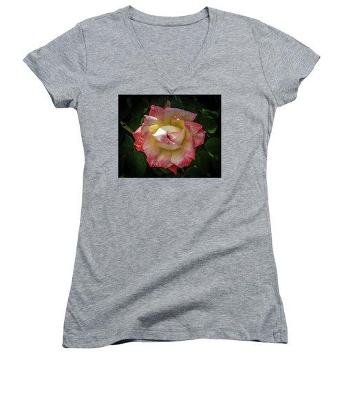 Rose From Mable Ringling's Garden Women's V-Neck