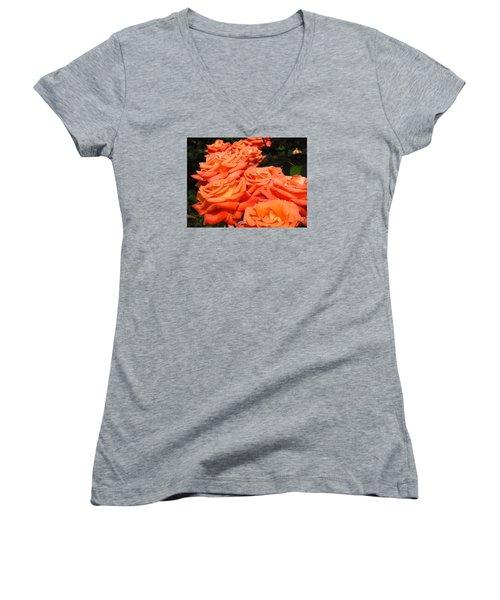 Rose Path Jubilee Women's V-Neck T-Shirt