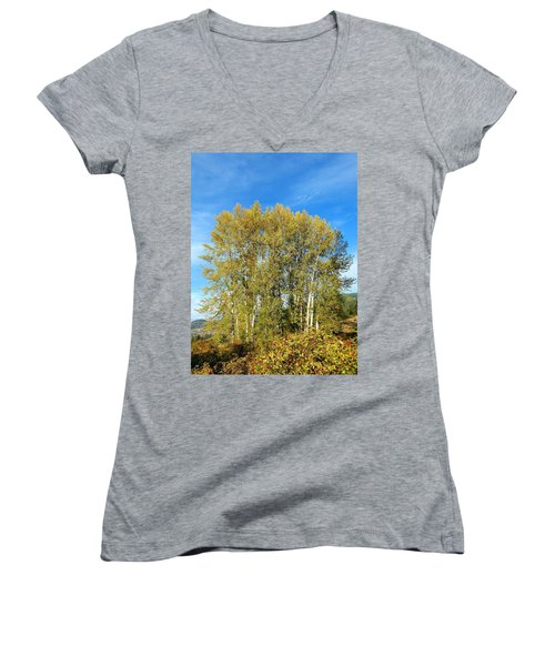 Rosehips And Cottonwoods Women's V-Neck