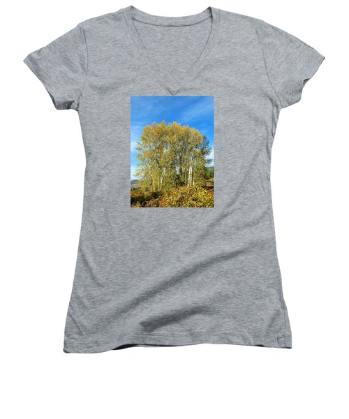 Rosehips And Cottonwoods Women's V-Neck T-Shirt (Junior Cut) by Will Borden