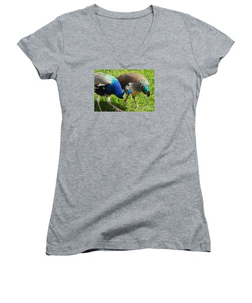 Royal Walk-about Women's V-Neck T-Shirt (Junior Cut) by Audrey Van Tassell