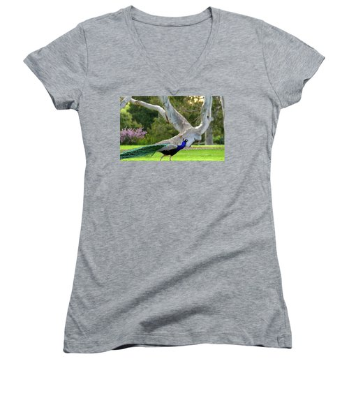 Royalty Women's V-Neck (Athletic Fit)