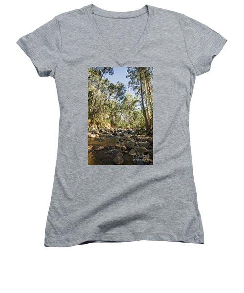 Rubicon River Women's V-Neck T-Shirt (Junior Cut) by Linda Lees