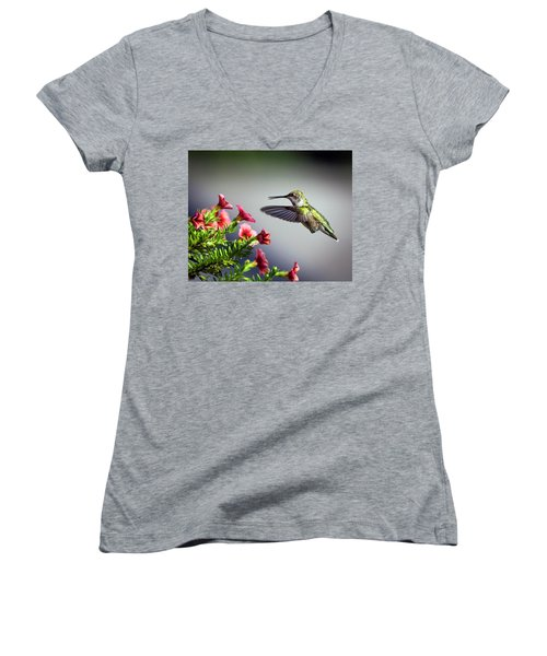 Ruby Throated Hummingbird #1 Women's V-Neck (Athletic Fit)