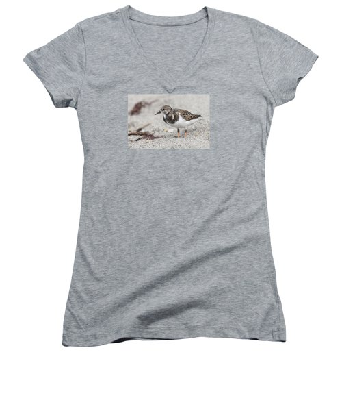 Ruddy Turnstone On The Beach Women's V-Neck (Athletic Fit)