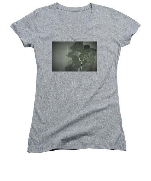 Runaway Women's V-Neck T-Shirt (Junior Cut) by Mark Ross