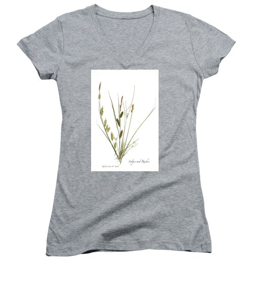 Rushes And Sedges Women's V-Neck (Athletic Fit)