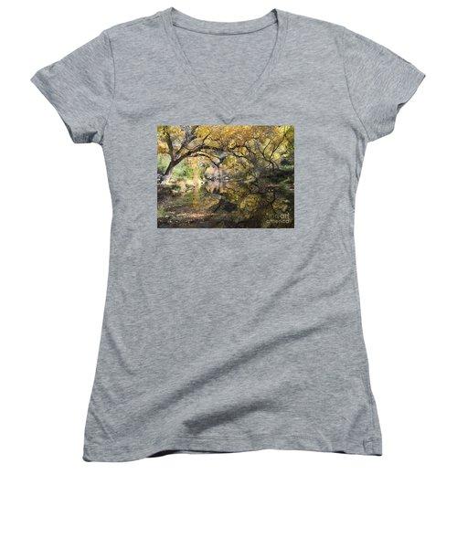 Sabino Canyon In Fall Women's V-Neck T-Shirt