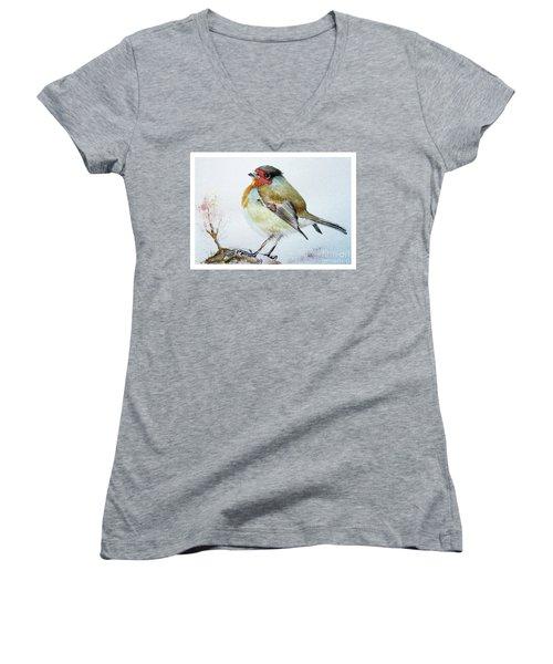 Sad Robin Women's V-Neck T-Shirt (Junior Cut) by Jasna Dragun