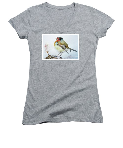 Sad Robin Women's V-Neck T-Shirt