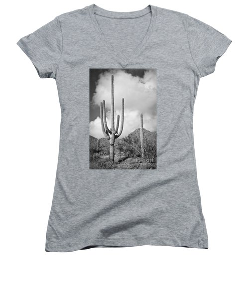 Saguaro Women's V-Neck (Athletic Fit)