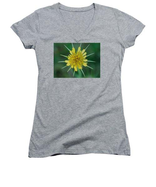 Salsify  Women's V-Neck T-Shirt